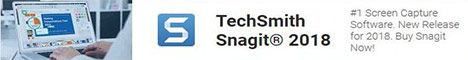 TechSmith Snagit 2018 Win&Mac ESD