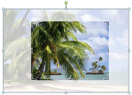 Parannettujen kuvankäsittelytyökalujen avulla voit korvata kuvat helposti ja säilyttää sivun asettelun.